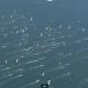 La Carrera de Kitesurf más larga del Mundo